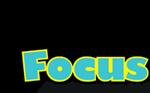 Focus Construction LLC